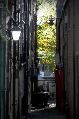 In the Shambles  Chesterfield    181018 (chrisdpyrah) Tags: chesterfield shambles alley greenery lamps