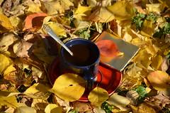 КОФЕЙНЫЙ АККОРД. (Angelok-Happy) Tags: кофе осень чашка ароматкофейный листья природаnature cupofcoffee autumn aroma