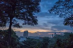 Sunset view from Mt Faber (.John Wong) Tags: bluehourhilltreesea sunset mtfabersingapore