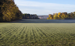 (amy20079) Tags: frost nikond5100 newengland maine autumn field farmfield trees morning landscape shadows rural country still peaceful