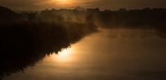 Ham Wall (Robin M Morrison) Tags: rspbhamwall mist torviewhide glastonburytor dawn sunrise golden