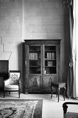 (Simon BOISVINET) Tags: caen normandie photography blackandwhite acros x100f room bookcase chair carpet windows light book stone abbayeauxhommes hoteldeville