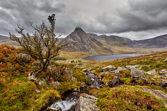 Ogwen valley (another_scotsman) Tags: ogwen snowdonia landscape mountains cloud rain sky wales tryfan stream cascade