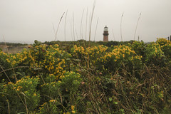 _MG_8990 (Sopranova) Tags: menemsha oakbluffs vineyardhaven aquinnah lighthouse newengland ferry massachusetts marthasvineyard island boat ocean atlantic beach campground yoga edgartown