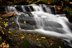 the flow (Felicis_Flower) Tags: water waterfall forest wald stone stein steinbach saarland germany fall herbst