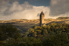 The National Wallace Monument (GenerationX) Tags: abbeycraig barr canon6d cornton hse nationalwallacemonument neil ochilhills oldstirlingbridge raploch riverforth scotland scottish stirling clouds dawn flowers grass landscape leaves monument morning mountains sky trees