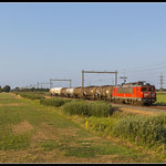 DB Cargo 1611, Zwolle thumbnail