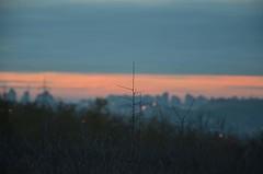 Landscape over the city (milanlukicart) Tags: landscape horizont nightlights belgrade night cityview cityscape