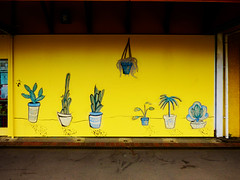 Pot Plants (Steve Taylor (Photography)) Tags: mural streetart shop yellow blue green brown newzealand nz southisland canterbury christchurch newbrighton plant cactus succulent pot hangingbasket handprint palmprint