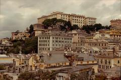 Houses of Genova (lumpy79) Tags: yashica tl electro x auto yashinondx 117 f50mm expired kodak gold 200 genova italy
