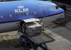 While the 1st officer goes through his/her papers with the cockpit window nicely open, loadmasters carefully check what luggage you get under your feet today . . (Eduard van Bergen) Tags: phaka times square new york airbus a330300 klm air france blue white platform apron juice network board power voltage current electricity 2012 fuselage airco cockpit radar flight flightdeck pilots ground crew schiphol airport amsterdam twins holland dutch pays bas netherlands niederlande nederland holanda still picture photo photograph bild sony ilce sigma dn art 60mm 28 crop stewardess attendant inflight officer purser hull uniform wings lease airplane aircraft papers window loadmaster bagage luggage hostess avion aero