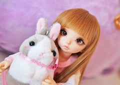 Himari ♥ (SunShineRu) Tags: ltf littlefee fairyland bjd ball jointed doll dolls cute kawaii yosd luna rabbit plushie amuse