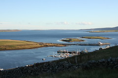 Scapa Flow (stuartcroy) Tags: orkney island scotland sea scenery sony still sky beautiful blue bird