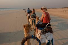 10003394.jpg (KevinAirs) Tags: camels kevinairs ocean camel travel westernaustralia ©kevinairswwwkaozcomau sand sky landscape landscapes beach australia sea jacquihawkins