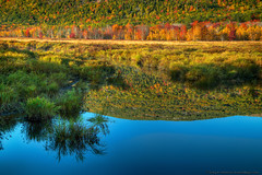Acadia National Park, Maine (Greg from Maine) Tags: autumn foliage acadia acadianationalpark reflection fallseason dorrmountain barharbor barharbormaine greatmeadows seasons autumncolors water