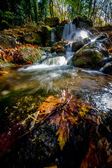 Everything flows... (TrippinOn) Tags: autumn greece leaves river stream waterfall cascade water lake long exposure idyllic rocks green yellow red flow silk silky naousa macedonia wide ultra sony a7ii alpha macedoniagreece macedoniatimeless μακεδονια