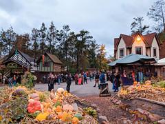 crossroads in the fall (SetsuntaMew) Tags: parenfaire renfaire faire festival pennsylvania pa fall autumn