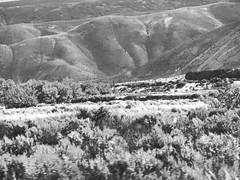 Nevada 20160703 (caligula1995) Tags: 2016 elko nevada roadtrip rockformation springcreek