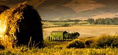 living closeness (Beppe Rijs) Tags: 2018 italien juli sommer toskana italy july summer tuscany