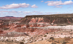 The Painted Desert (Ron Drew) Tags: nikon d850 painteddesert painteddesertpetrifiedforestnationalpark nationalpark arizona park clouds desert sky landscape outdoors southwest usa autumn afternoon erosion