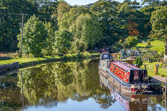 SJ1_1623 - East Marton moorings (SWJuk) Tags: skipton england unitedkingdom swjuk uk gb britain eastmarton yorkshire northyorkshire canal leedsliverpoolcanal moorings canalboats barges narrowboats water flat calm reflections light sunlight trees 2018 sep2018 autumn autumncolours nikon d7200 nikond7200 18300mm rawnef lightroomclassiccc