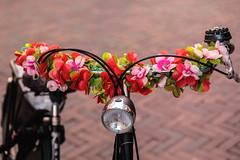 Flower Power (g_heyde) Tags: middelburg zeeland nl flowerpower handlebar lenker fahrrad blumen sl