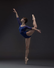 Hannah (Photography of Dance) Tags: ballet ballerina pointeshoe leotard dancer nikon d850 paulcbuff savageseamless talentedyoungdancer girl youngballerina beautiful einsteins savagepaper pointeshoes tutu silverefx