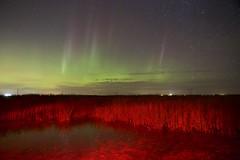 Red in a landscape (John Andersen (JPAndersen images)) Tags: alberta aurora clouds farm fence franklake milkyway night portrait silhouettes sky stars