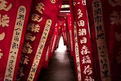 Red gate (t.kunikuni) Tags: 香取市 千葉県 日本 jp 香取 千葉 多田朝日森稲荷神社 神社 鳥居 japan chiba katori shrine red flag 旗 gate