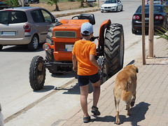 Young boy walking with his best friend dog (Ciddi Biri) Tags: boy young pet animal bestfriends emotional summer sunnyday walking together boywithdog omdem10 olympus14150ii m43turkiye getolympus guard defender safety thrust closer dog köpek hayvan evcilhayvan
