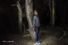 Bosque encantado (Marta S.Prada) Tags: noche bosque night forest light luz