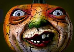 Vergie's pumpkins are back! (Bennilover) Tags: halloween pumpkins sculptures sculptor vergielightfoot art rogersgardens jackolanterns scary spooky teeth weird eerie scare