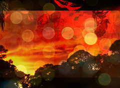 Love Song (soniaadammurray - On & Off) Tags: digital manipulated experimental collage abstract picmonkey sky clouds trees sunset lips kiss music song love imagine bokeh bokehwednesdays artchallenge orange