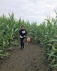 017 Time To Escape (saschmitz_earthlink_net) Tags: 2018 california temecula bighorsefeedandmercantile cornmaze orienteering laoc losangelesorienteeringclub corn