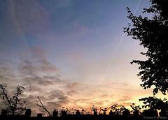 07:48 19.10.18 (jpmm) Tags: 2018 amsterdam sunrise zuid wolken clouds stratus cumulus contrails