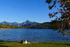 Beautiful Allgäu (ivlys) Tags: weisensee see lake berg mountain säuling landschaft landscape natur nature ivlys