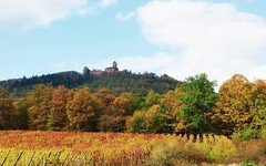Le château du Haut-Koenigsbourg (mamietherese1) Tags: world100f earthmarvels50earthfaves